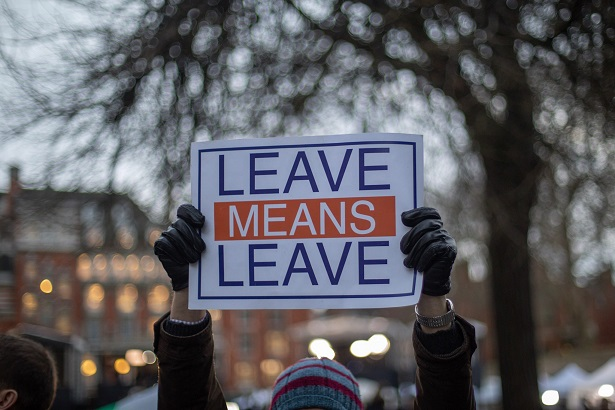 Leave means Leave Poster