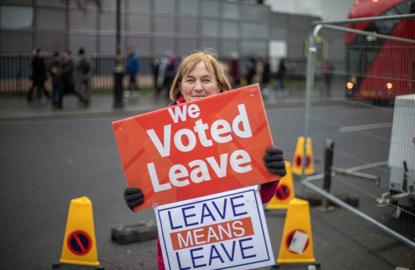 Vote Leave Protester