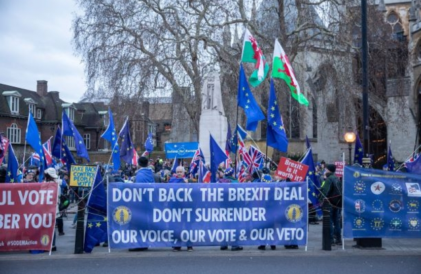 Dont back the Brexit Deal Banner